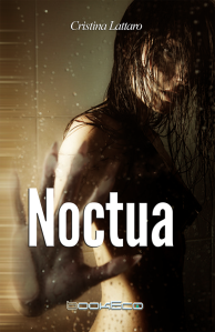 noctuaFront_medium